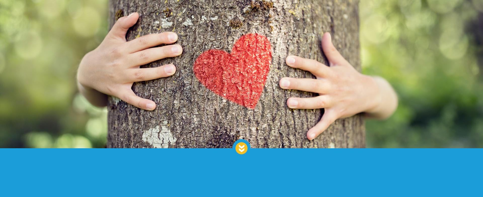 Bild: Baum mit Herz - Zeichen für erneuerbare Energien